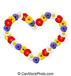 été, cadre, fleurs, coloré