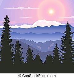été, collines, paysage, rural