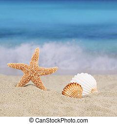 été, copyspace, scène, vacances, mer, plage