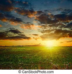 été, coucher soleil, paysage