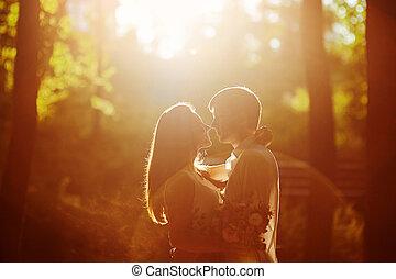 été, couple, parc, regarder, autre, coucher soleil, chaque, aimer