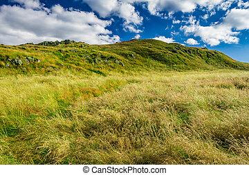 été, ecosse, collines vertes