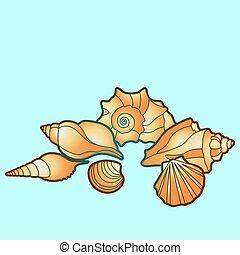 été, elements., noix saint jacques, shells., conque, fetes, peinture, etoile mer, vecteur, conception, main, coquille mer, mollusk.