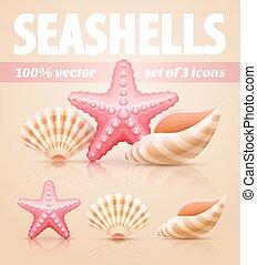 été, ensemble, etoile mer, icônes, coquilles, mer