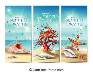 été, ensemble, seashells, corail, etoile mer, cailloux, vecteur, crabe, bannières, plage, illustrations, sablonneux
