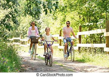 été, famille, parc, bicycles, équitation, heureux