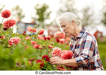 été, femme aînée, fleurs, jardin