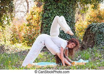 été, femme, yoga, couple, pratique, jeune, extérieur, bois, poses, jour, homme