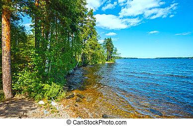été, (finland)., lac, ruotsalainen, vue