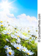 Été, fleur,  art, Printemps, résumé, fond, herbe
