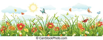 été, fleurs, herbe