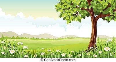 été, fleurs, paysage arbre, panorama