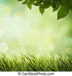 été, forêt, naturel, arrière-plans, matin