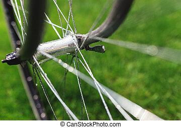 été, gros plan, vélo, pré, classique, photo, voyage, arrière-plan vert, field., herbe, route