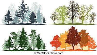 été, hiver, printemps, autumn., 4, arbres, vecteur, illustration, saisons, forêt