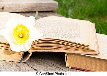 été, images, à, une, ouvert, book., livre ouvert, sur, les, fond, de, nature., connaissance, est, power., fleurs, dans, les, book., education., sur, les, bois, table., teacher's, day., espace vide, pour, texte