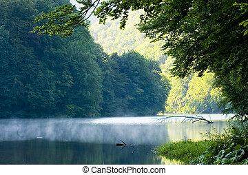 été, lac, matin