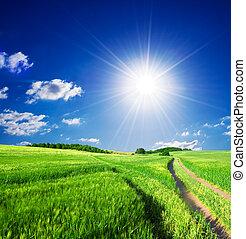 été, landcape, rural