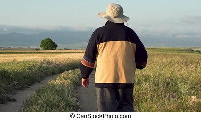 été, marche, randonneur, campagne, personnes agées, afternoon., poteau, trekking, suivre