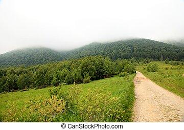 été, nature., montagnes., route, paysage.