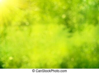 été, nature, résumé, bokeh, arrière-plan vert