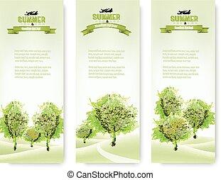 été, nature, vert, vector., banners.