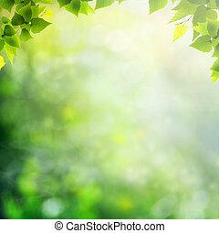 été, naturel, résumé, arrière-plans, forêt, après-midi
