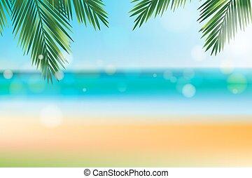 été, noix coco, feuille, sommet, temps, plage