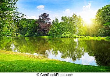 été, parc, lac, scénique