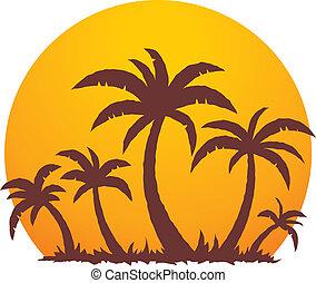 été, paume, coucher soleil, arbres