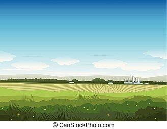 été, paysage nature, champ