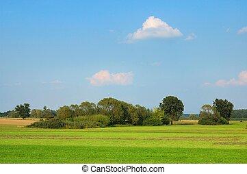été, paysage