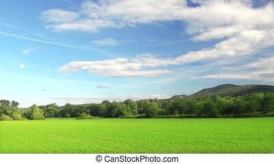 été, paysage rural