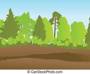 été, paysage, vecteur, forêt, fond