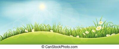 été, paysage vert
