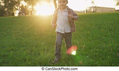 été, pelouse, parc, ensoleillé, courant, coucher soleil, enfant, amusement