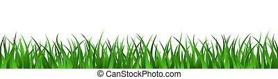 été, pelouse, seamless, arrière-plan vert, herbe, frontière