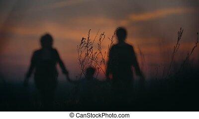 été, peu, marche, fils, grand-mère, coucher soleil, tenant mains, mère, herbe