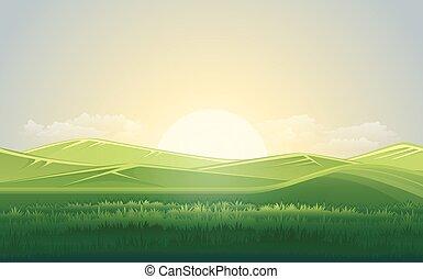 été, pré vert, et, paysage montagne, à, sunset., vecteur, illustration