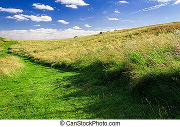été, pré vert, sentier