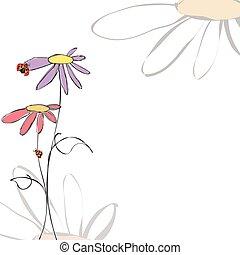 été, printemps, fond, floral, ladybirds, blanc