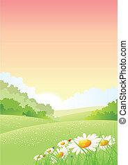 été, printemps, matin, affiche, saisons, ou