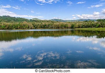 été, rivière, ensoleillé, calme, jour