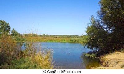 été, rivière, nature