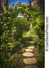 été, sentier jardin