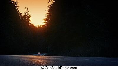 été, soir, forêt, conduit, voiture