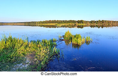 été, soir, lac, paysage.