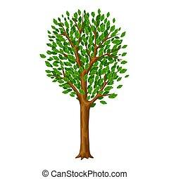 été, stylisé, leaves., printemps, arbre, vert, ou