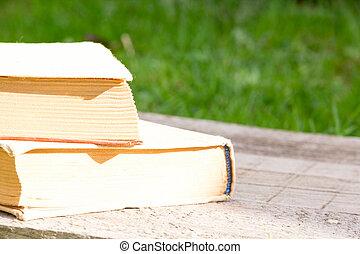 Été,  table, connaissance, puissance, bois, texte,  nature, espace,  teacher&#39,  s, Livre, jour,  Education, Livre, fond, images, fleurs, ouvert, vide
