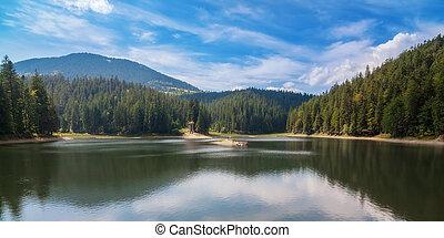 été, ukraine., synevir, lac, panorama
